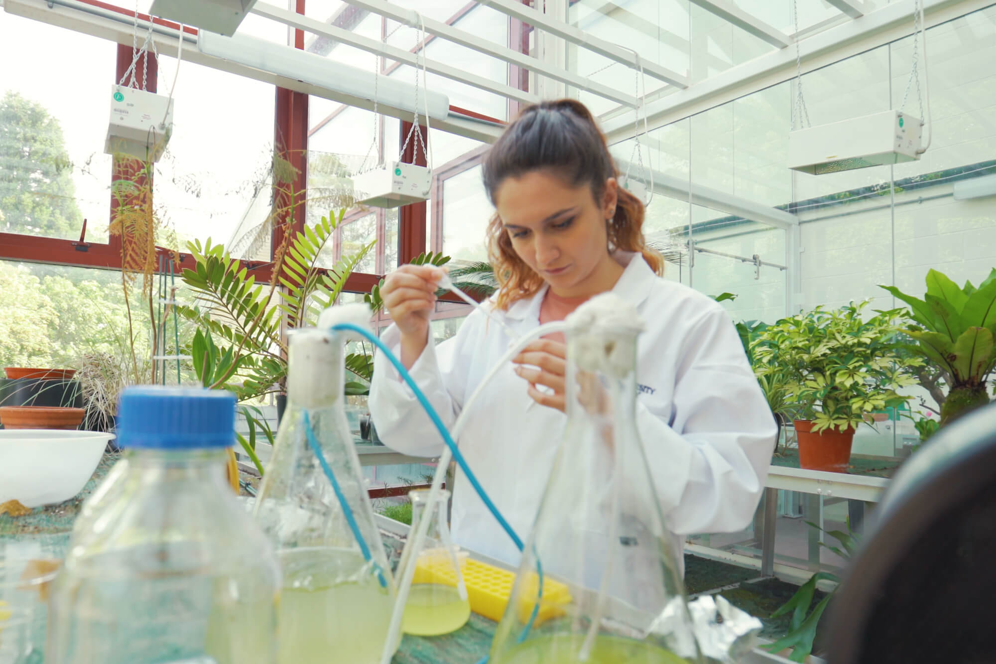 Biology Student - Image Group 2